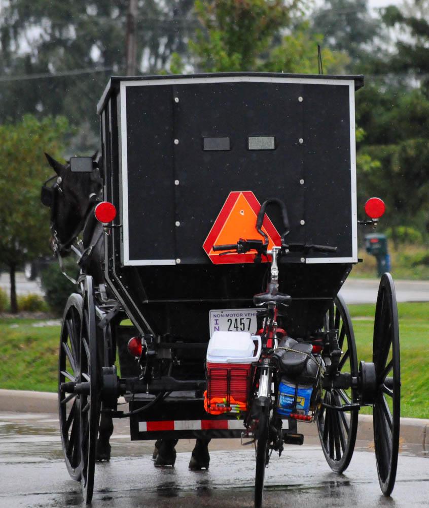 Amish (1 of 1)