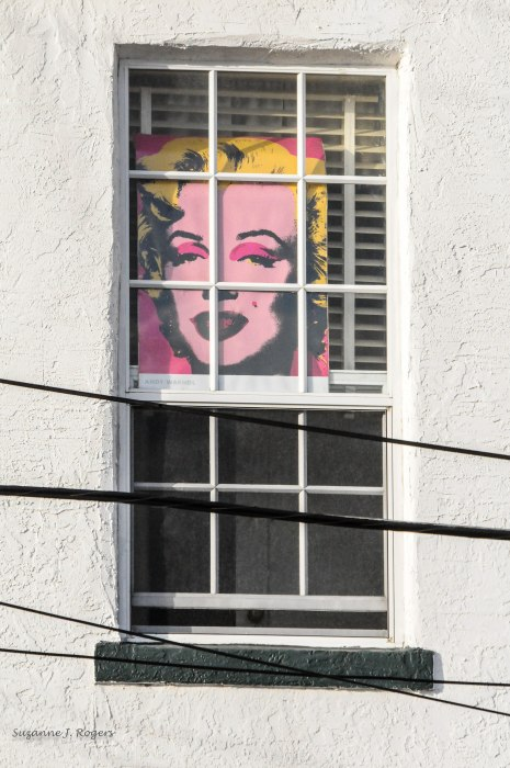 Marilyn (1 of 1)