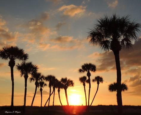 6766 Beautiful sunset