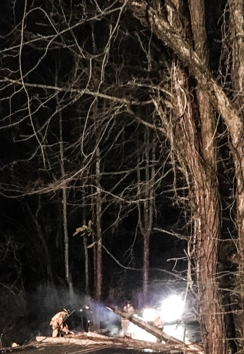 0245-lifting-the-logs