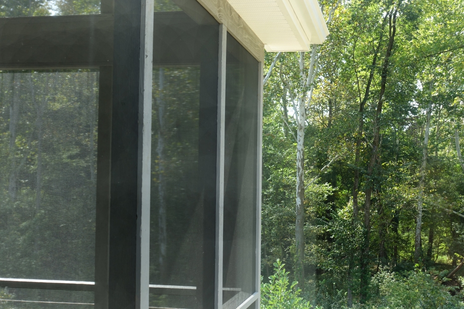 Screened in porch to woods