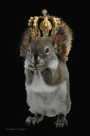 9180 3wms Squirrel with crown