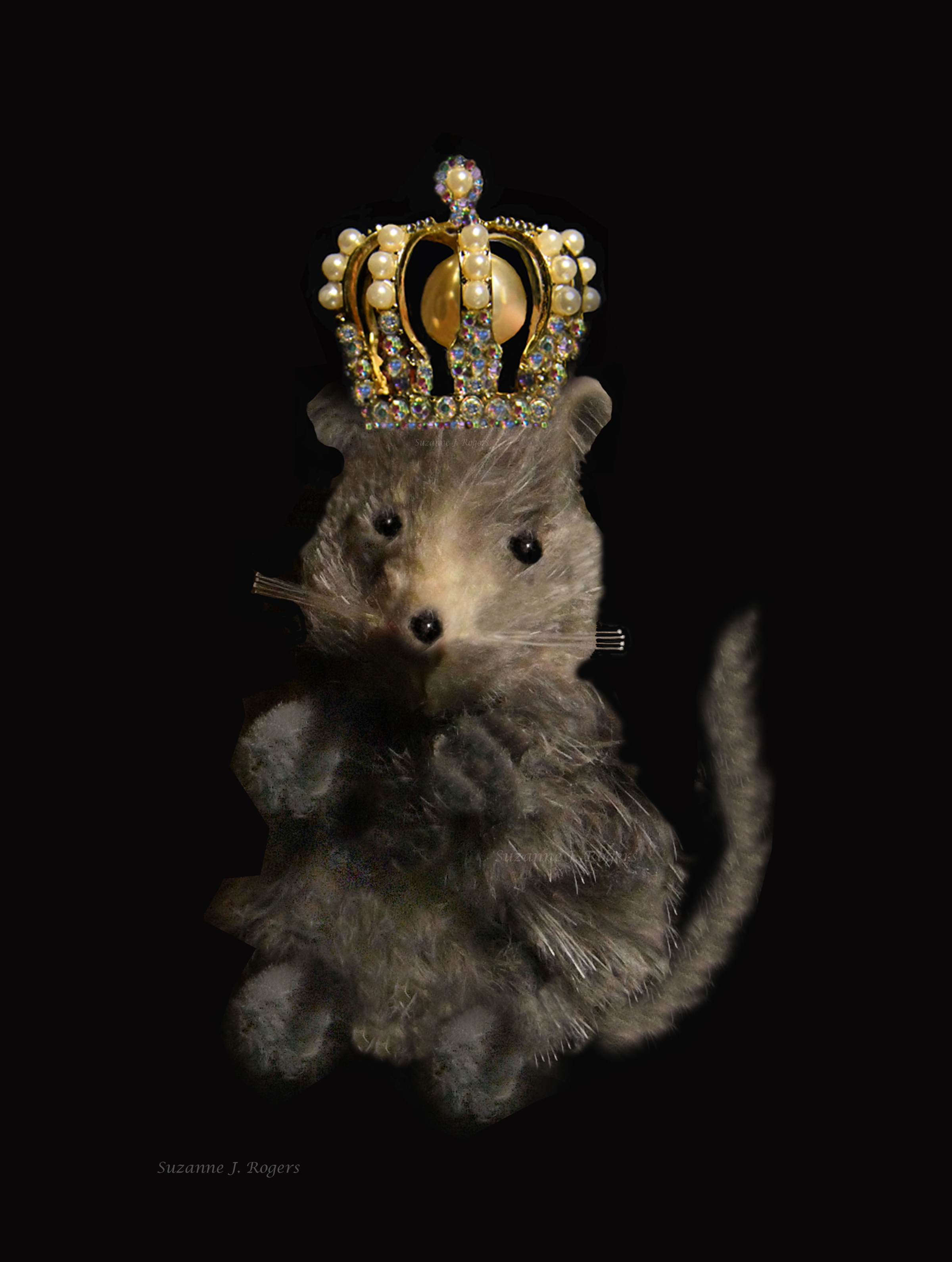 use this The mouse King_